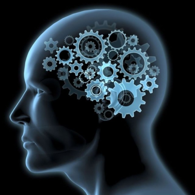 Stress e tanti impegni, il cervello così resta in salute