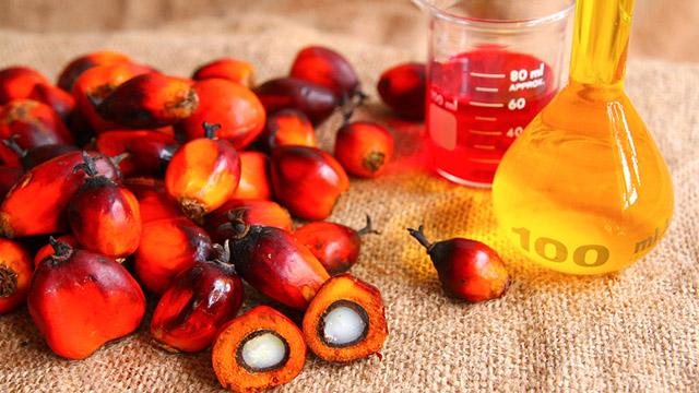 Olio di palma è cancerogeno? E' vero o sono solo invenzioni?