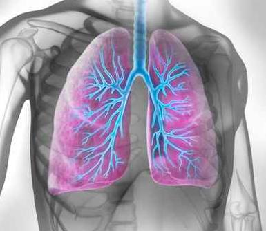 Asma e riabilitazione polmonare