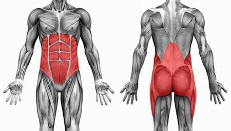 Core stability: gli esercizi base