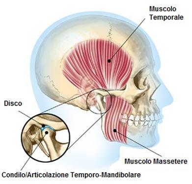 Articolazione temporo-mandibolare: con lo stretching torna in forma