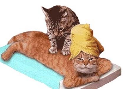 Chirurgia: per alleviare dolore post intervento, efficaci massaggio e analgesico