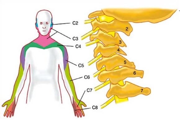 Boom di neuropatie periferiche, ma evitare il dolore è possibile