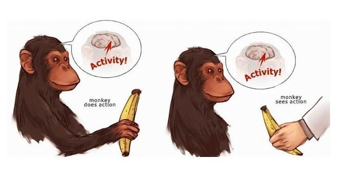 Grazie ai neuroni specchio, il «prestigiatore» cura il cervello