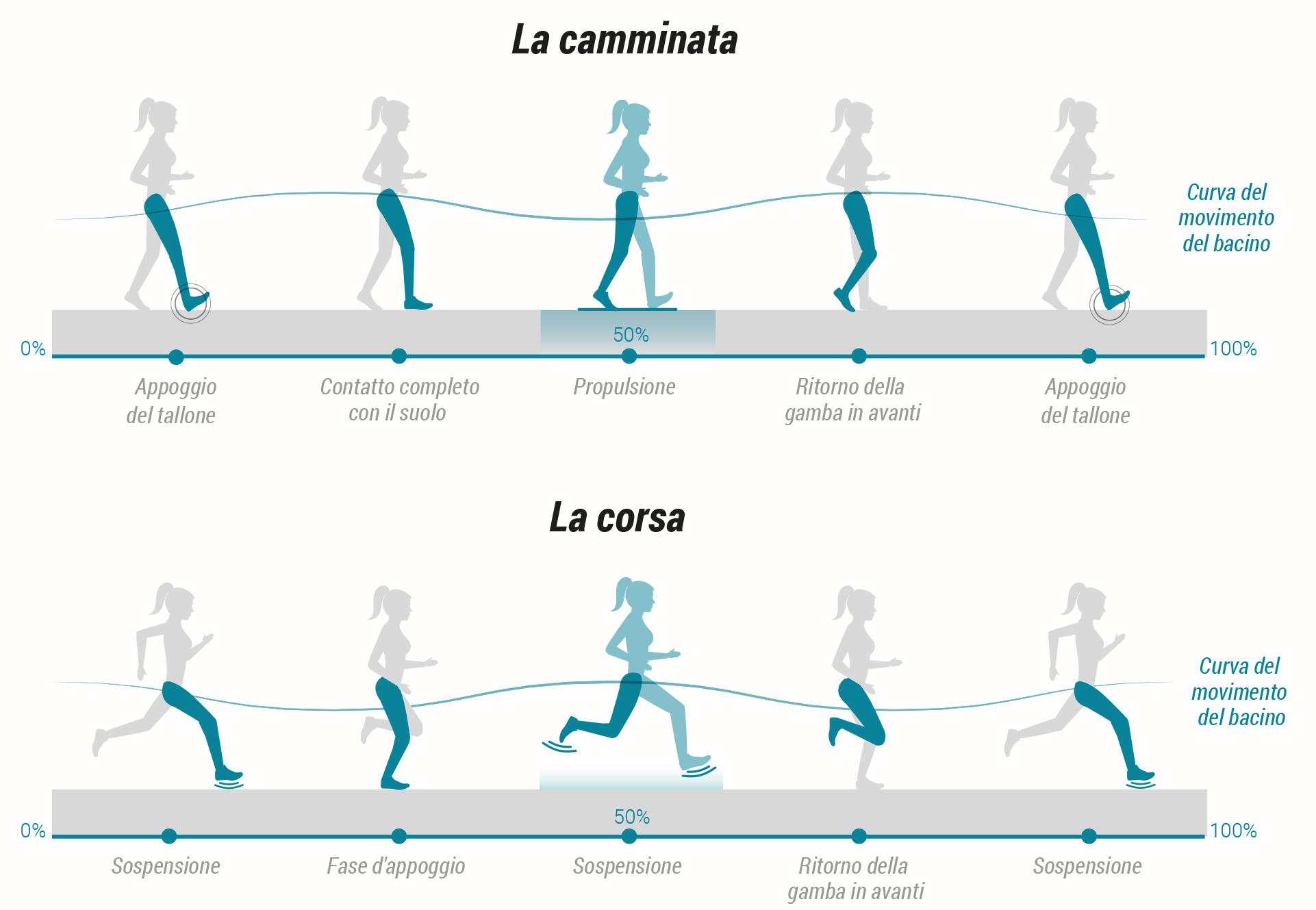 Camminare fa dimagrire ed è meglio della corsa