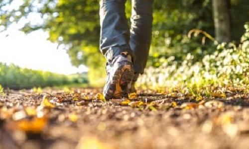 """Stress da Covid? """"La miglior medicina è una passeggiata nella natura"""""""